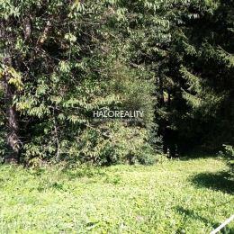 Ponúkame na predaj pozemok v kúpeľnej obci Vyhne. Pozemok sa nachádza v romantickej lokalite s ďalšími rodinnými domami a rekreačnými chatami. ...