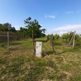 Predáme záhradný pozemok o výmere 2779 m2 v blízkosti Sliačskej ul. Pozemok má šírku 32 m, bez vody - možnosť studne. Prístup k pozemku je po ...