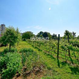 Ponúkame Vám na predaj slnečný, mierne svahovitý pozemok v meste Nitra - časť Šúdol. Pozemok má rozlohu 1000m² ( 13×77m ) s prístupom z jednej strany ...