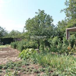 Ponúkame na predaj záhradný pozemok s rozlohou 400m² (15x27m) v Senci. Pozemok sa nachádza v blízkosti železničnej stanice, vzdialený cca 5 minút od ...