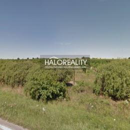 Ponúkame na predaj vinicu s výmerou 2370m² (8x296m) v meste Senec na Diaľničnej ceste. Pozemok je vedený ako orná pôda, aktuálne sa využíva na ...