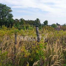 Na predaj pozemok, v súčasnosti vedený ako vinica, s celkovou rozlohou 822 m2.Pozemok sa nachádza v obci Vinosady.Rozmery pozemku cca 11 x 79 m, ...