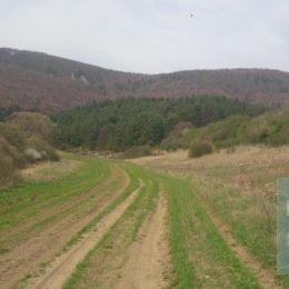 Ponúkame na predaj krásny celodenne slnečný pozemok nachádzajúci sa v blízkosti obce Domaniža, okres Považská Bystrica. Pozemok má celkovú výmeru 17 ...