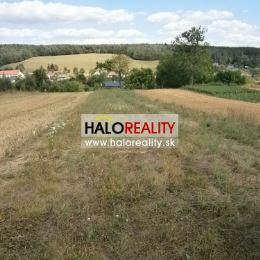 Ponúkame na predaj mierne svahovitý, slnečný pozemok v podhorskej obci Nemečky, okres Topoľčany. Pozemok, o ploche 1146 m², sa nachádza na okraji ...