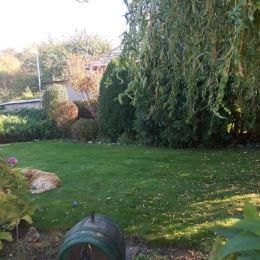 Na predaj záhradu vhodnú aj na stavebný pozemok 327 m2, Kalná nad Hronom, Levice. Pozemok sa nachádza pri asfaltovej ceste v strede obce neďaleko ...
