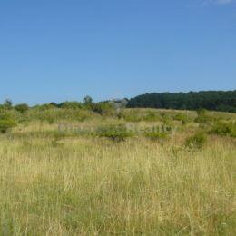 Na predaj pozemok v Pezinku pri lese. Pozemok sa nachádza v krásnom prírodnom prostredí na okraji Limbachu. Jeho rozloha je 3885 m2. Vhodný by bol na ...