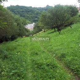 Ponúkame na predaj pozemok vhodný na výstavbu rodinného domu alebo chaty priamo v obci Vyhne. Pozemok s rozlohou 3013m² je obdĺžnikového tvaru, ...
