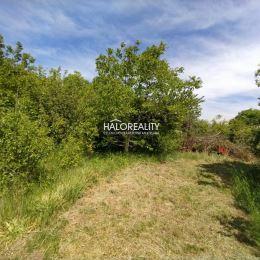 Predaj, pozemok-záhrada 256 m² Trnava, Modranka