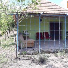 Na predaj viničný domček 48 m2 ,celková výmera pozemku 1366 m2 Mýtne Ludany , okres Levice. Ponúkaný domček sa nachádza len 30 m od asfaltovej cesty ...